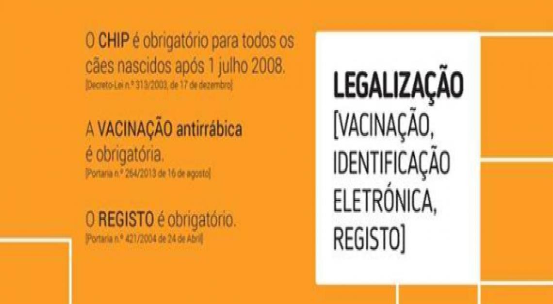 CAMPANHA DE VACINAÇÃO ANTIRRÁBICA em SANTA JOANA